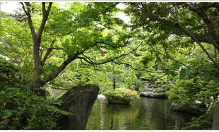 Ryokan Taisenkaku PIC4